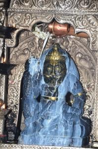 ಶ್ರೀಗುರುನರಸಿಂಹ ದೇವರಿಗೆ ಅಭಿಷೇಕ